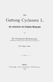 Dummy after: Friedrich Hildebrand, Die Gattung Cyclamen L., Jena 1898 (frontispiece)